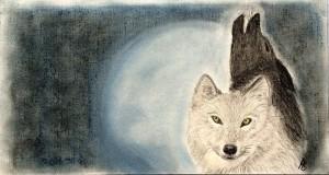 wölfe der schwarze tod