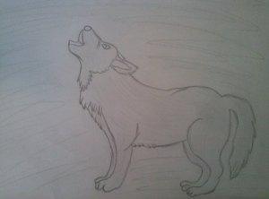 Wolf von Swenja Rieger